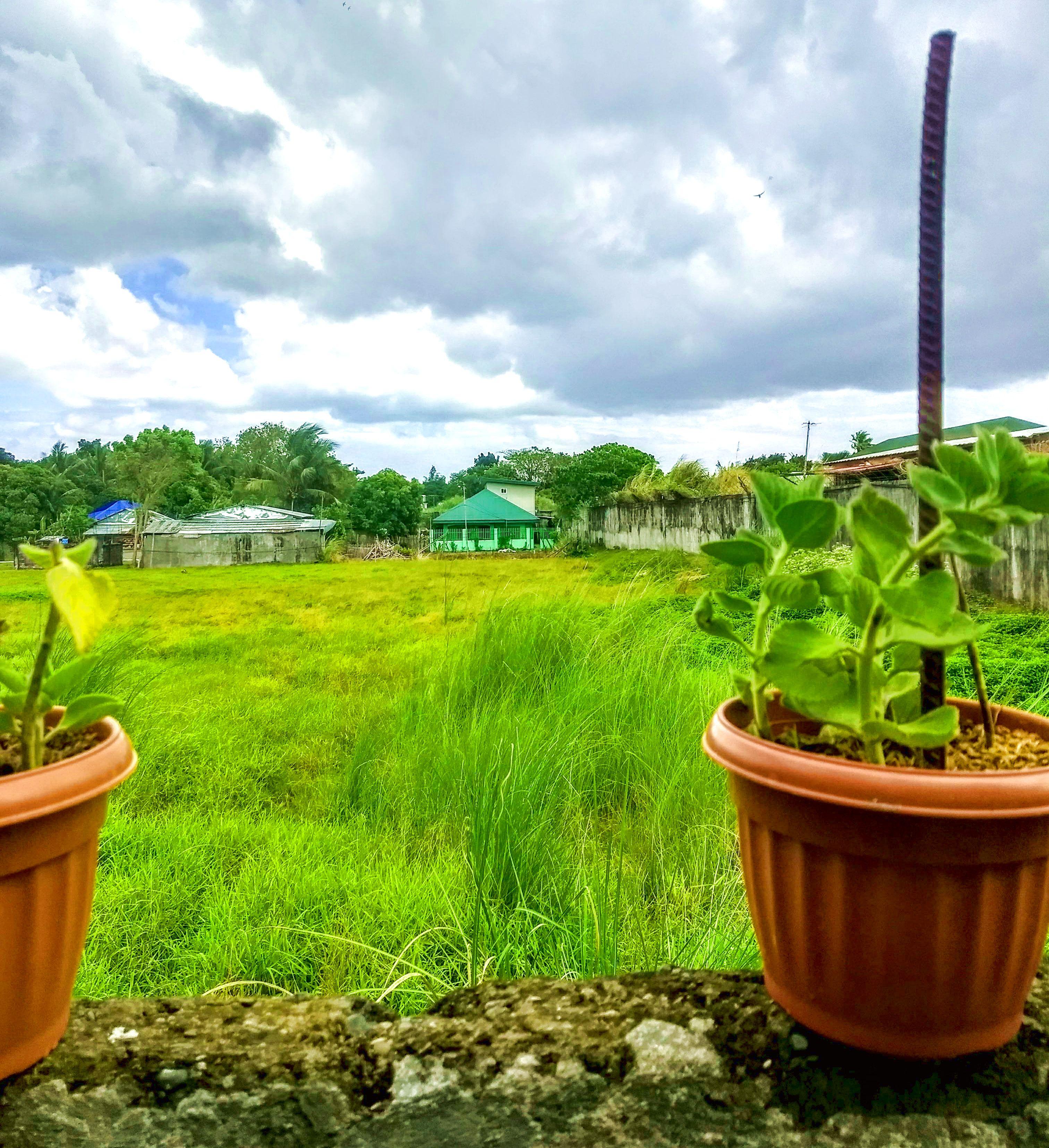 Iloilo Philippines landscape