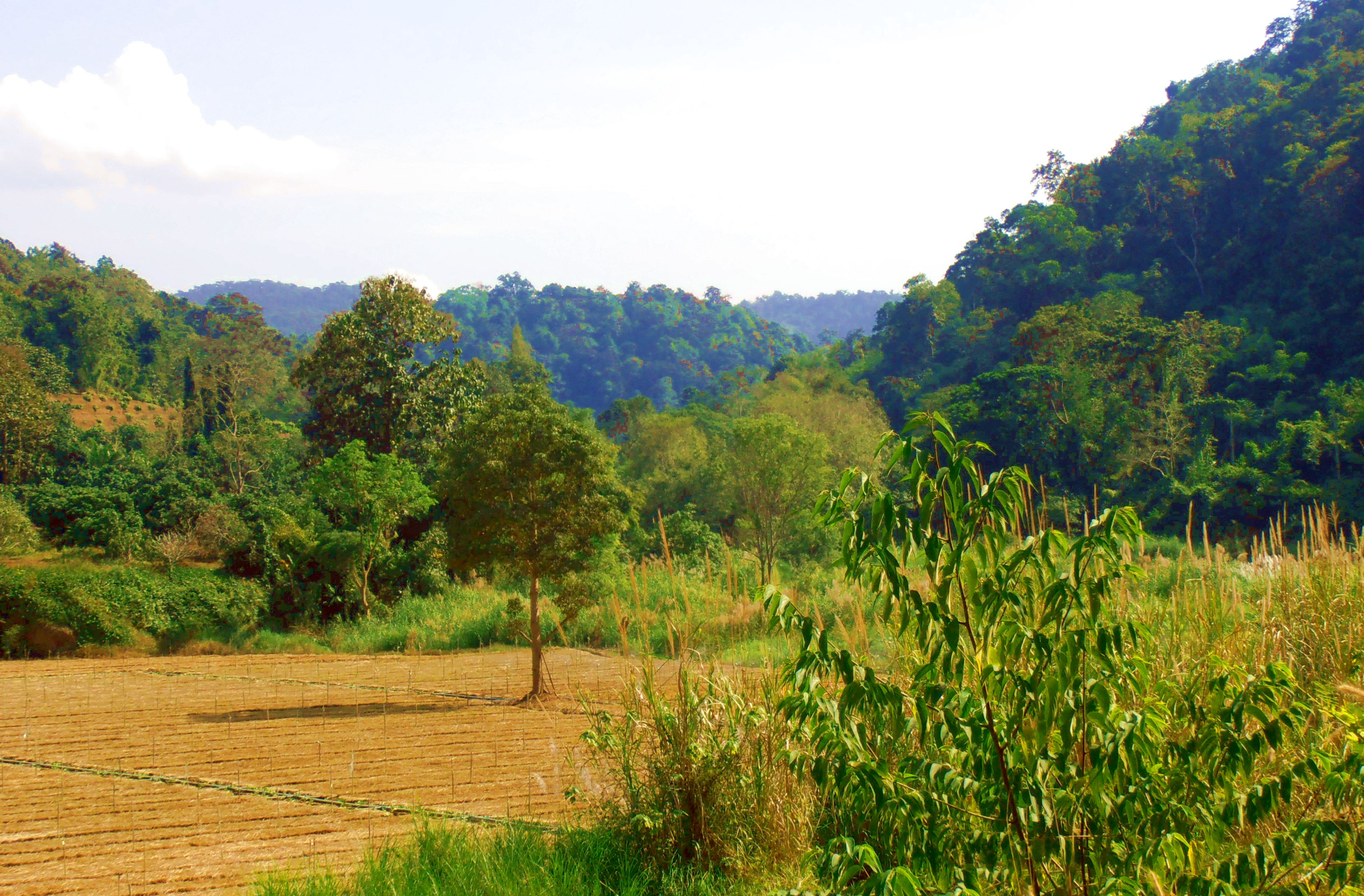 Chiang Dao Thailand landscapes