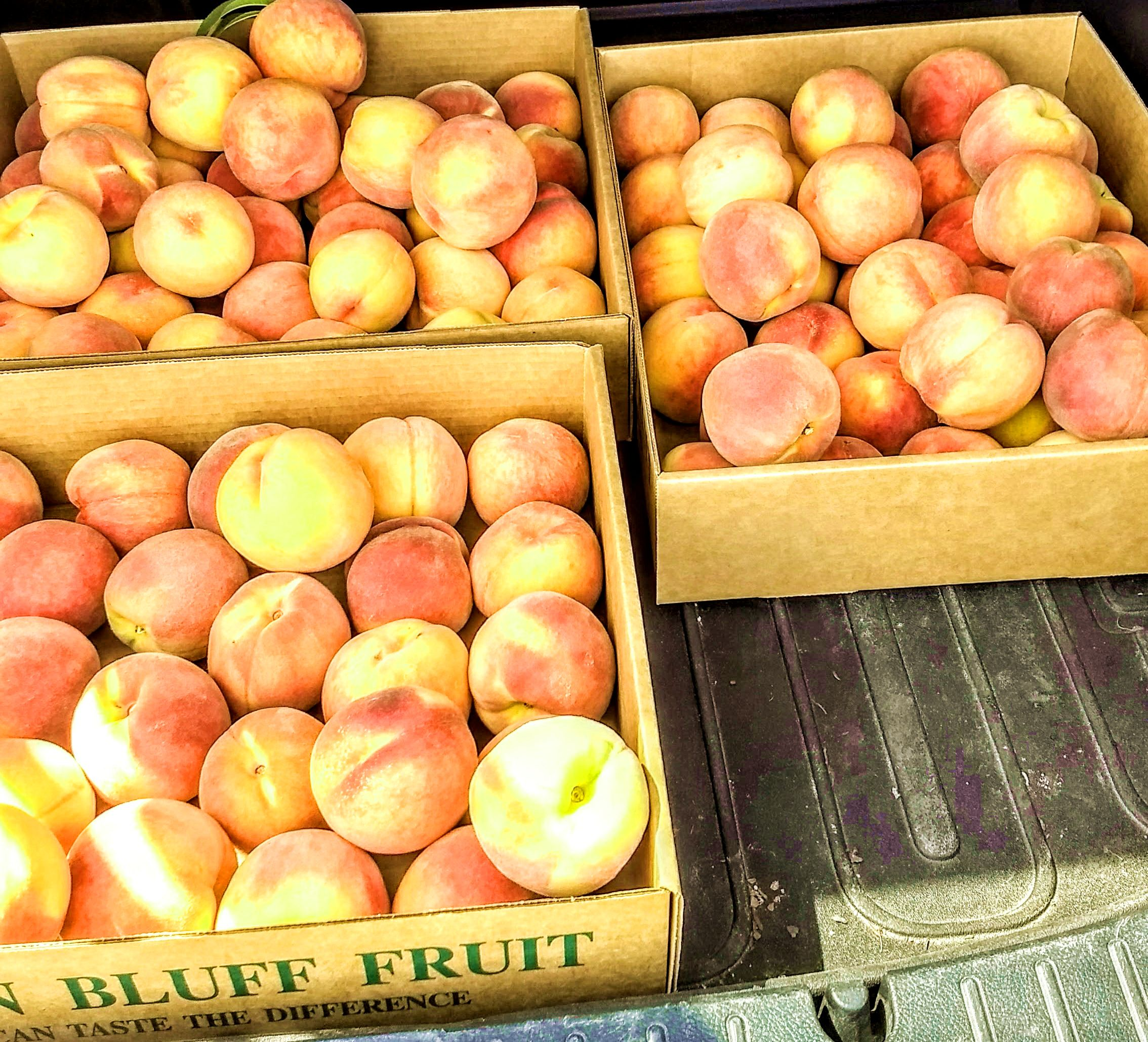 Peaches Peone Prairie Washington State