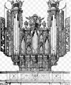 organ clipart
