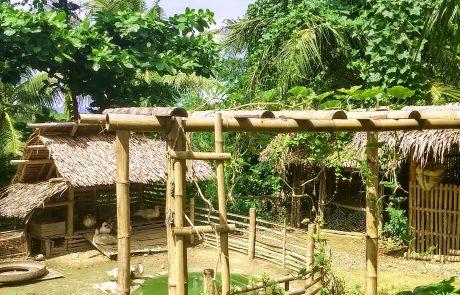 Garin Farm view