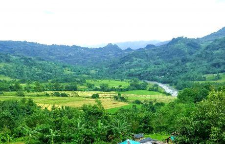 Panay view