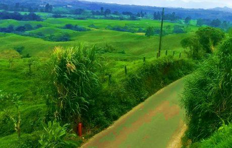 Landscape near Filandia, Colombia
