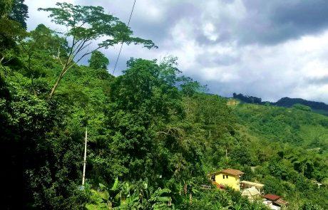 Landscape near Marsella, Colombia