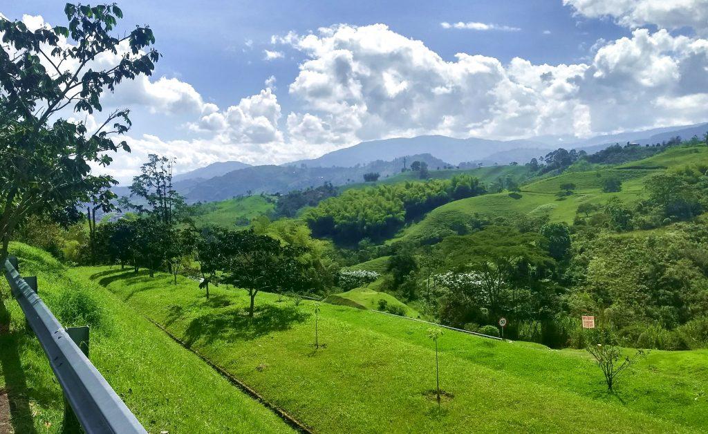 Landscape near Pereira