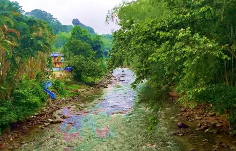 Rio Verde Quindio Colombia