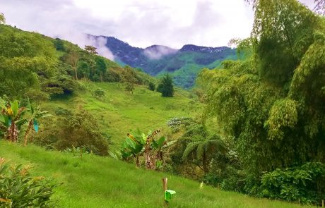 View between Cordoba and Pijao, Quindio