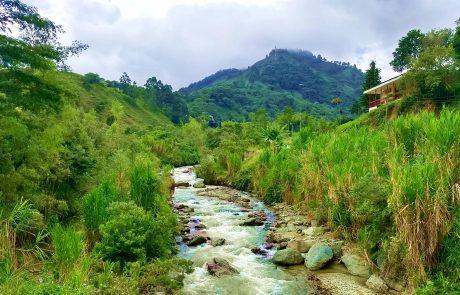 Pijao, Quindio view