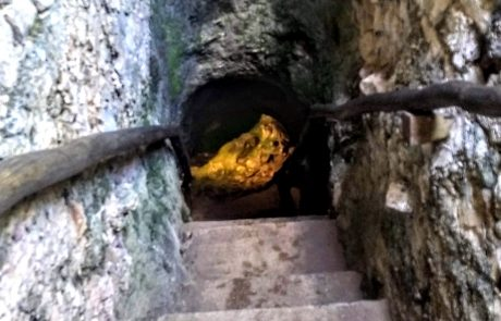 Cenote de San Ignacio view