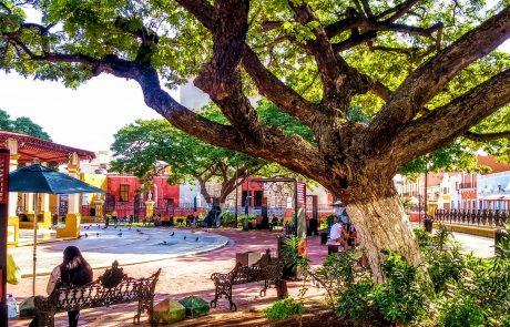 Campeche View