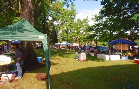 Sandpoint farmer's market