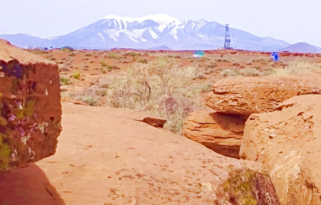 Near Meteor Crater, AZ