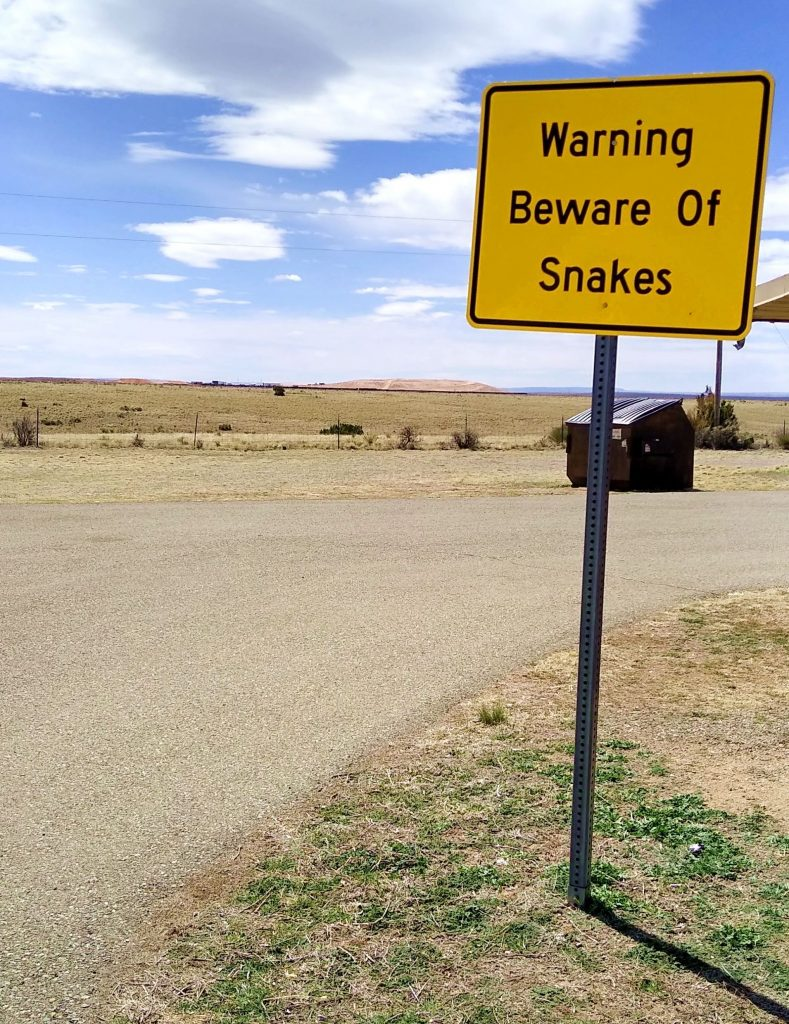 Snake warning on I-40 in NM