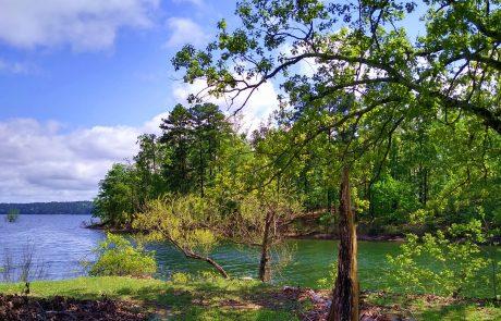 DeGray Lake Resort State Park, Arkansas