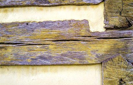 Log House, Historic Bethabara, Winston-Salem, NC
